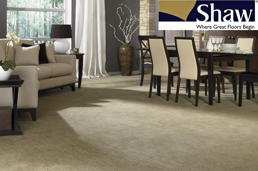 Shaw Professional Carpet Cleaning by LaFrance Cleaning Solutions