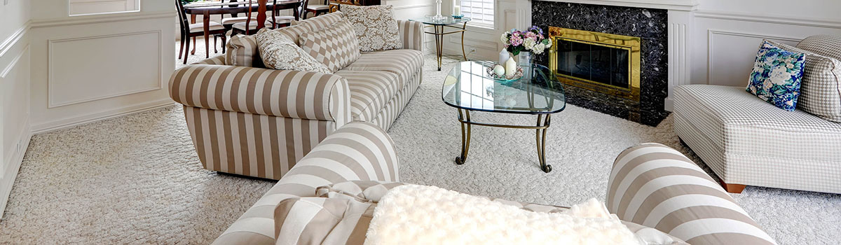 Silk Upholstery Cleaning
