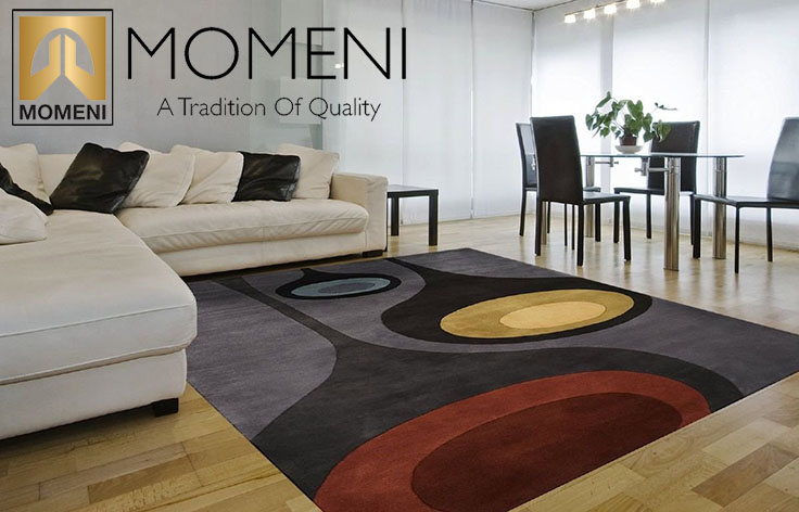 Momeni Rug Cleaning Lafrance Cleaning Solutions
